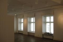 Ungari Instituut, Värvimistööd